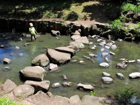 子供と川遊び